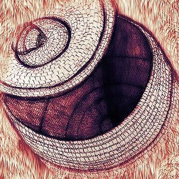 Native American Basket 2 by Ayasha Loya