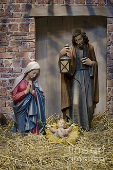Nativity scene by Steev Stamford
