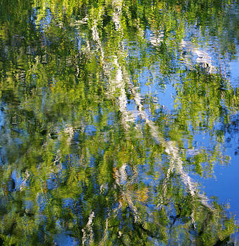Natural Abstract - Refections of a Sycamore Tree in Licking Creek, Franklin County PA by Michael Mazaika