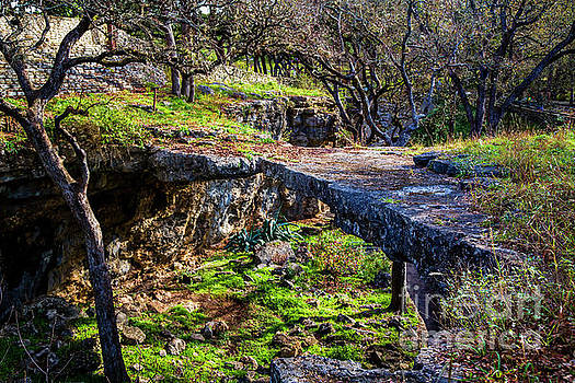 Jon Burch Photography - Natural Bridge