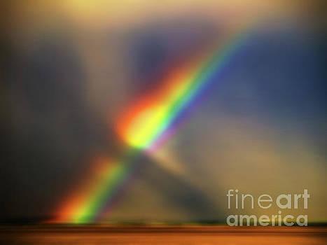 JORG BECKER - Natural colors