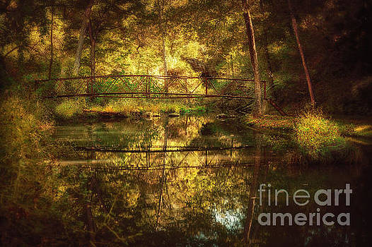 Natural Falls Bridge  by Tamyra Ayles
