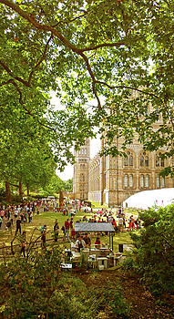 Natural History Museum Summertime by Anne Kotan