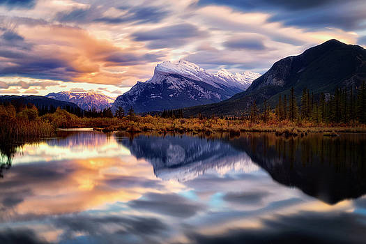 Natural Mirror by Nicki Frates