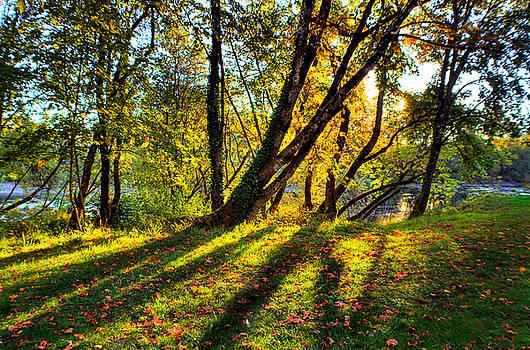 Shining Through by Tyra OBryant