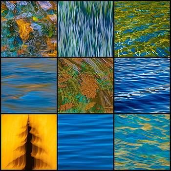 Nature Abstract Collage by Sherri Meyer