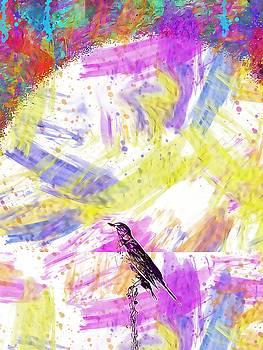 Nature Bird Animal Tree Sky  by PixBreak Art