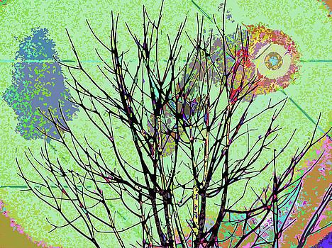 Nature Collision by Simone Pompei