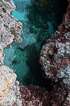 Pedro Cardona Llambias - Menorca Nature colors