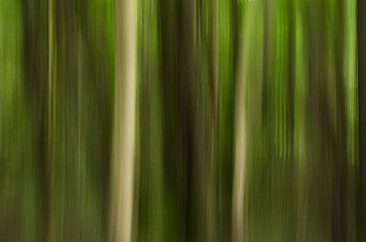 Nature impressionism by Marco Calandra