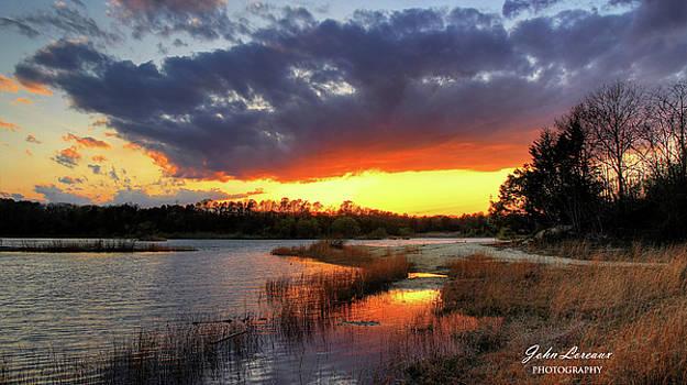 Nature Reserve by John Loreaux