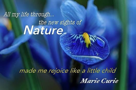 nature208