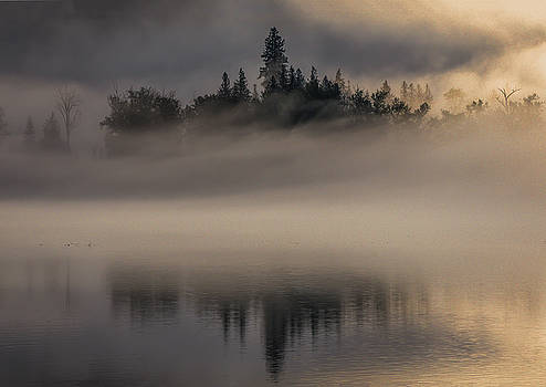Nature's Castle by Joy McAdams