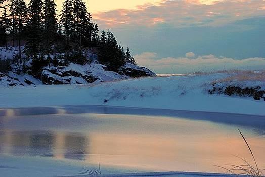 Natures Ice Rink by Kiersten Mitchell