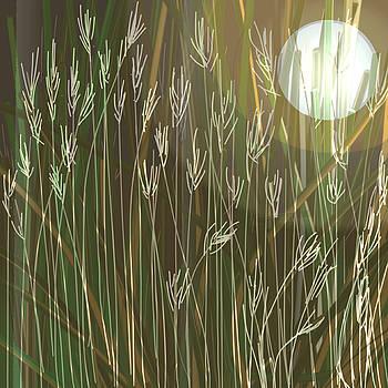 Nature's Landscape  by Denny Casto