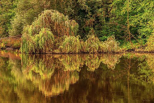 Nature's Mirror by Wim Lanclus