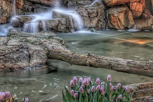Natures Perfection by Brad Walters