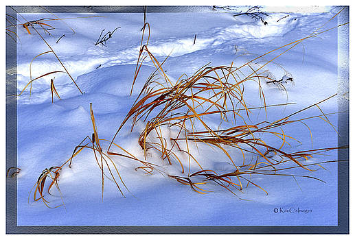 Nature's Winter Abstract #3 by Kae Cheatham