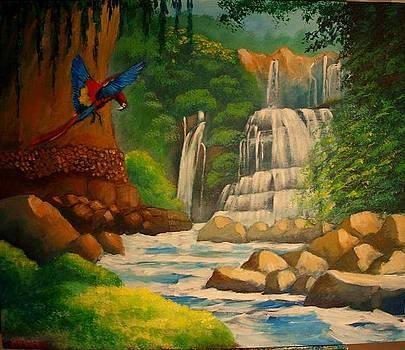 Nauguaca's waterfall by Jean Pierre Bergoeing