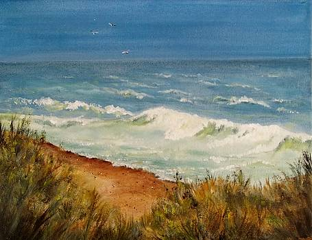 Nauset beach of Cape Cod by Joan Mace