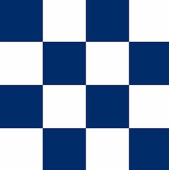 Nautical November Flag by Anthony Fishburne