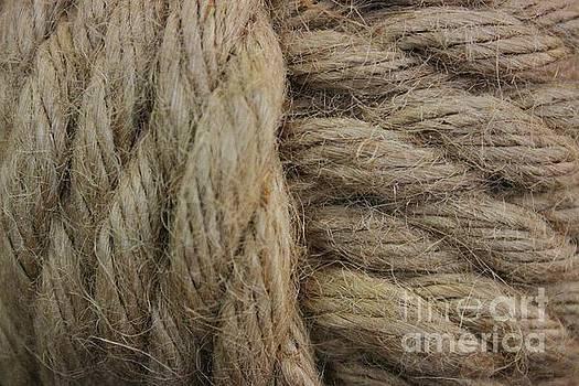 Paulette Thomas - Nautical Tan Rope