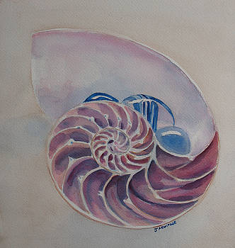 Jenny Armitage - Nautilus With Glass Stones