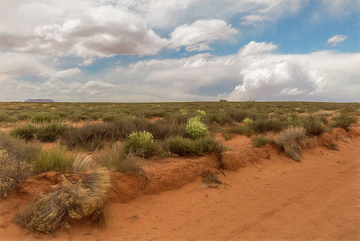 Navajo Reservation by Janice Bennett