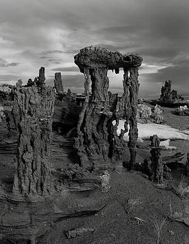 Navy Beach--Mono Lake by Chris Morrison