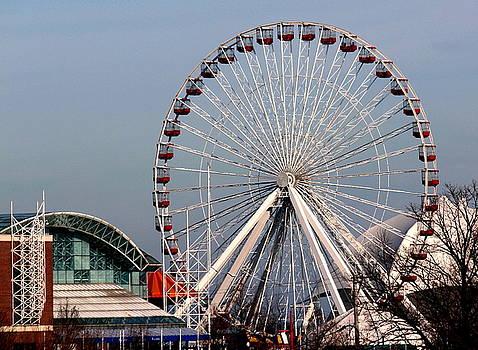 Rosanne Jordan - Navy Pier Ferris Wheel