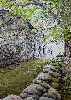 Near Clwt y Bont by Alwyn Dempster Jones