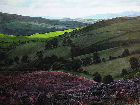 Near Llangollen by Harry Robertson