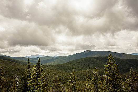 Near Monarch Pass At The Continental Divide by Carl Wilkerson
