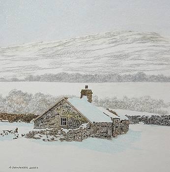 Near Pentrefoelas by Alwyn Dempster Jones