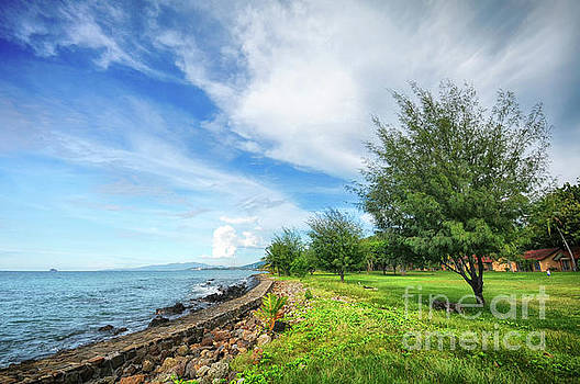 Near The Shore by Charuhas Images