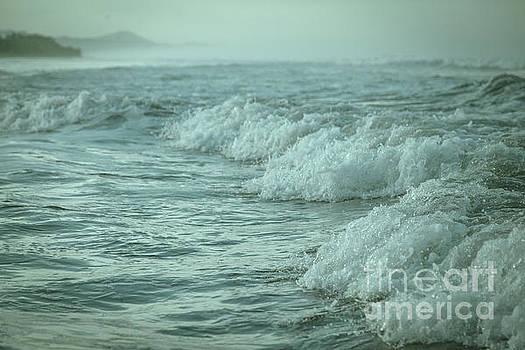 Near Waves by Iris Greenwell