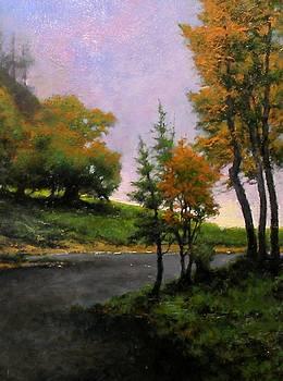 Near Woodland by Jim Gola