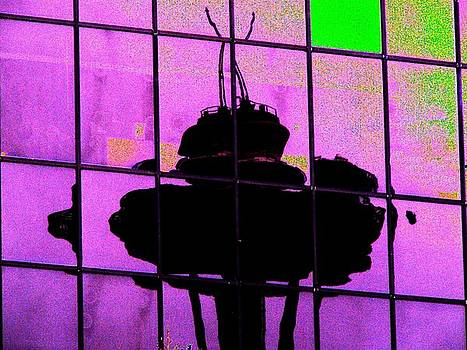 Tim Allen - Needle Reflect 2