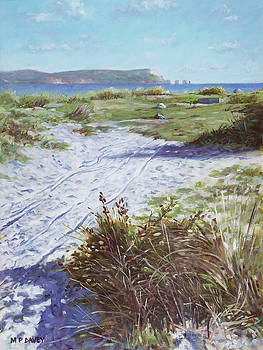 Needles from Hengistbury Head by Martin Davey