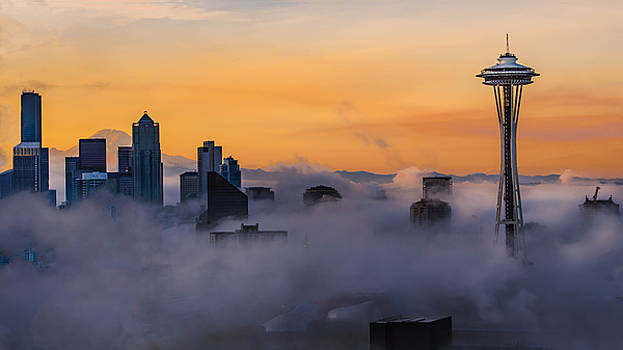 Needling The Fog by Kevin McClish