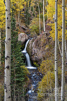 Nellie Creek Waterfall in Fall by Tibor Vari