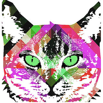 NEON Rainbow KITTY CAT Poster PRINT by Robert R by Robert R Splashy Art Abstract Paintings