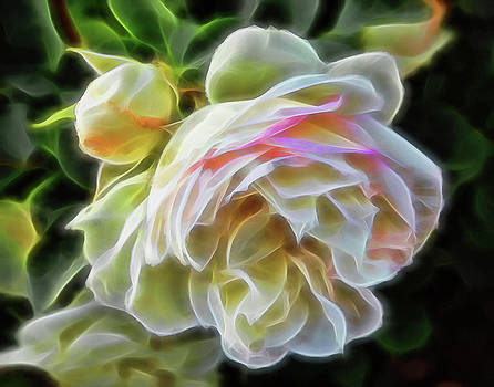 Neon White Rose by Dean Crawford Jr