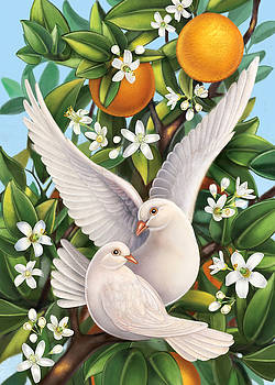 Neroli - Harmonious Partnership by Anne Wertheim