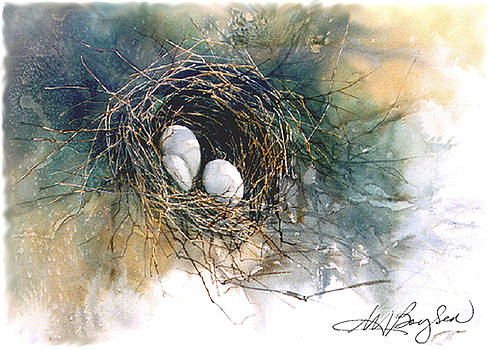 Nest of Kin by Maryann Boysen