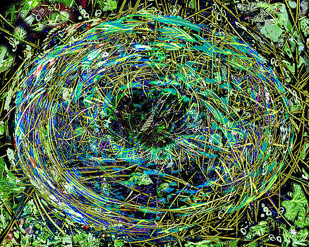 Nest With Blue Feathers by Joanna  Katz