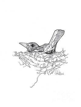 Nesting by Michael Ciccotello