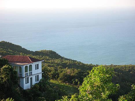 Nestled House by France Garrido