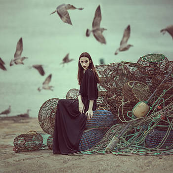 Nets And Seagulls by Anka Zhuravleva