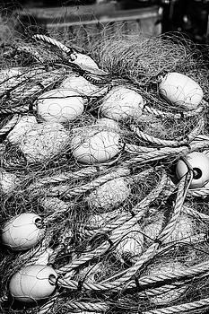 Netted by John Dryzga